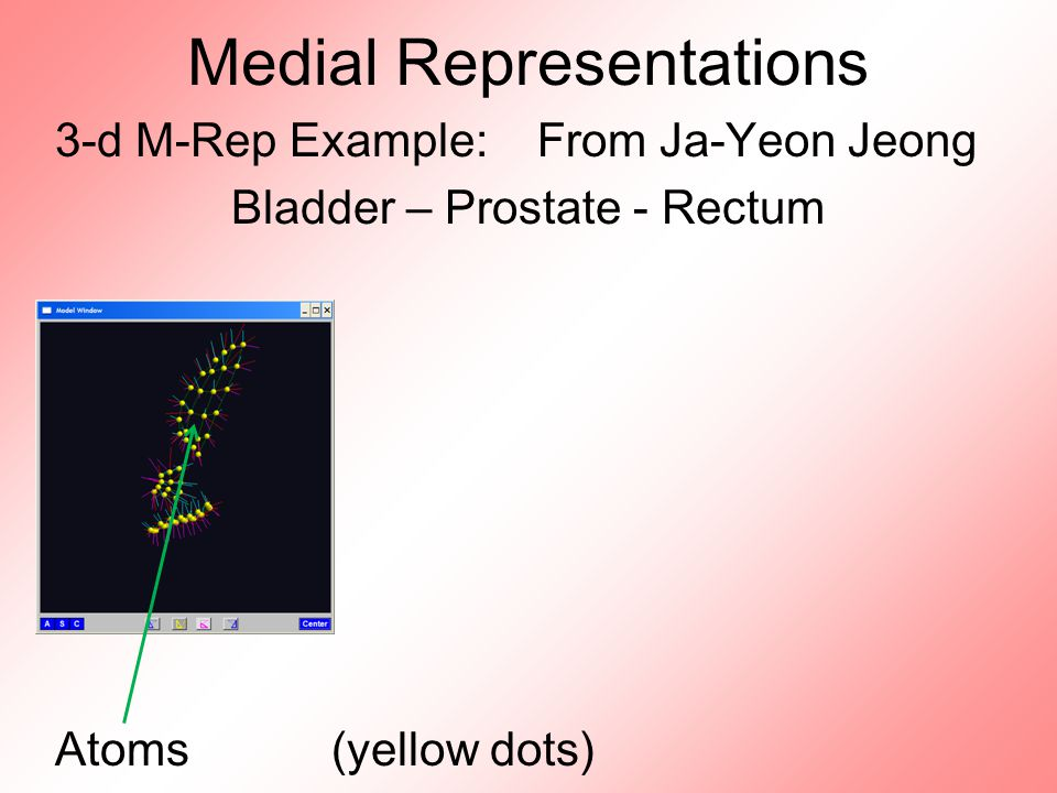 Medial Representations 3-d M-Rep Example: From Ja-Yeon Jeong Bladder – Prostate - Rectum Atoms (yellow dots)