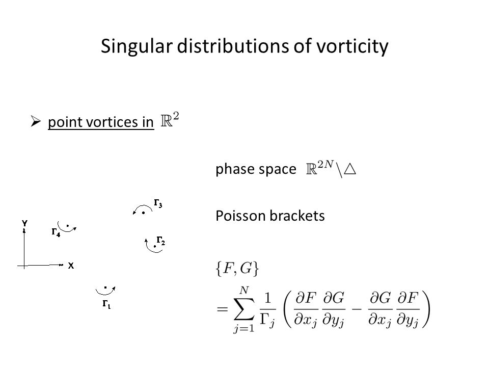 Singular distributions of vorticity  point vortices in phase space Poisson brackets