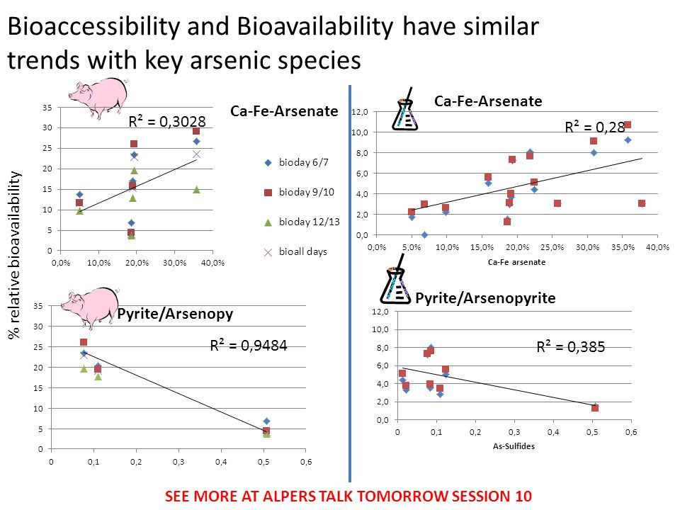 Bioaccessibility and Bioavailability have similar trends with key arsenic species % relative bioavailability Ca-Fe-Arsenate Pyrite/Arsenopyrite SEE MORE AT ALPERS TALK TOMORROW SESSION 10