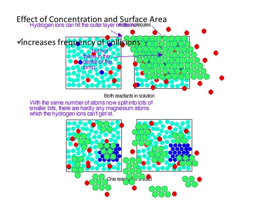 Effect of Concentration and Surface Area increases frequency of collisions