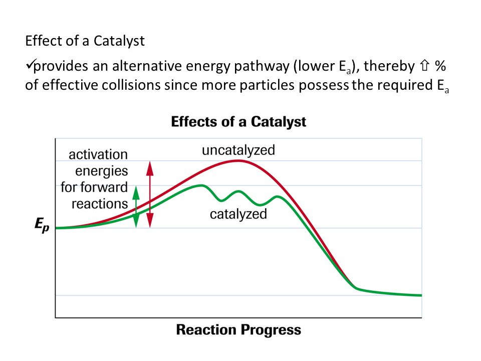 Effect of a Catalyst provides an alternative energy pathway (lower E a ), thereby  % of effective collisions since more particles possess the required E a