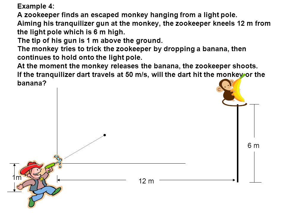 Example 4: A zookeeper finds an escaped monkey hanging from a light pole. Aiming his tranquilizer gun at the monkey, the zookeeper kneels 12 m from th