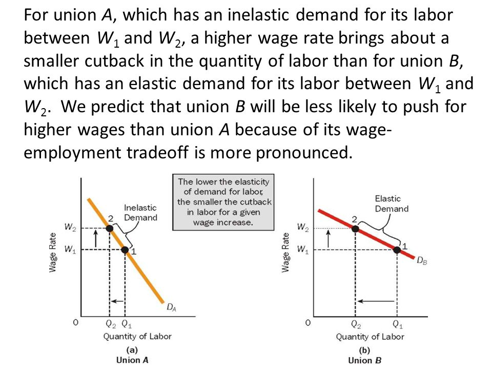 For union A, which has an inelastic demand for its labor between W 1 and W 2, a higher wage rate brings about a smaller cutback in the quantity of labor than for union B, which has an elastic demand for its labor between W 1 and W 2.