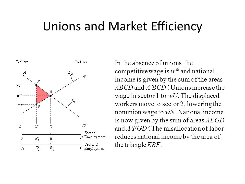 Unions and Market Efficiency In the absence of unions, the competitive wage is w* and national income is given by the sum of the areas ABCD and ABCD.