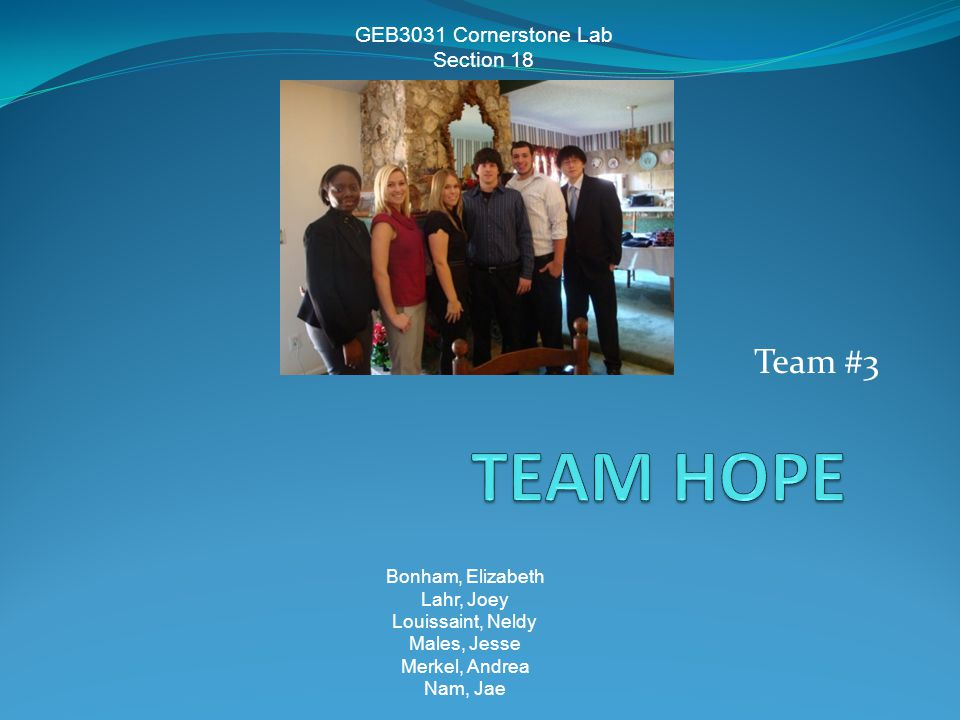 Team #3 GEB3031 Cornerstone Lab Section 18 Bonham, Elizabeth Lahr, Joey Louissaint, Neldy Males, Jesse Merkel, Andrea Nam, Jae