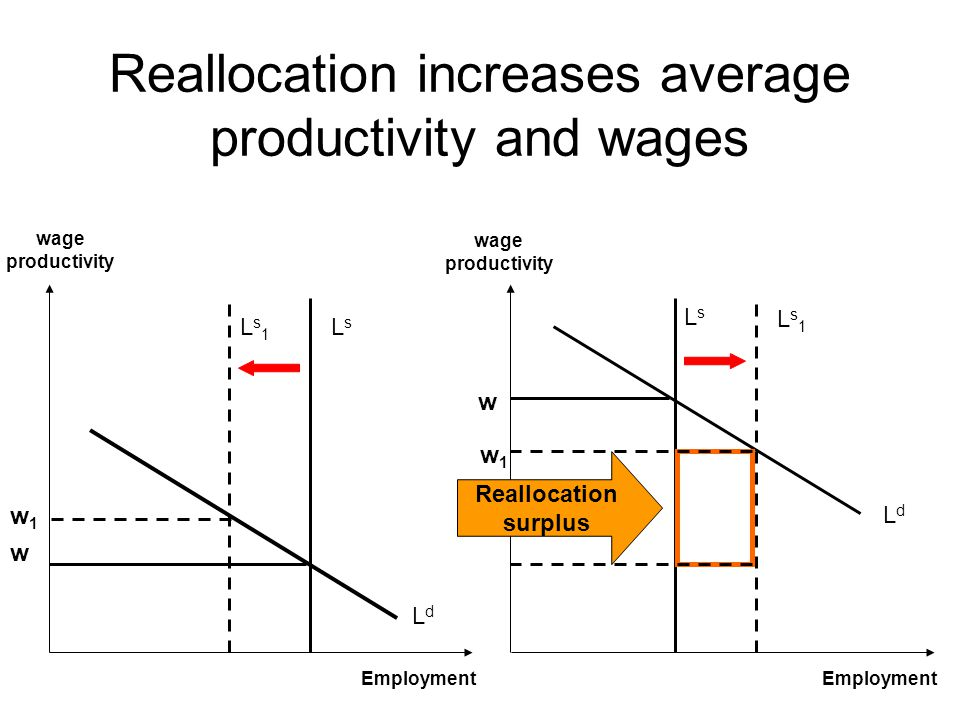 Reallocation increases average productivity and wages LdLd Ls1Ls1 LsLs LdLd Ls1Ls1 LsLs wage productivity wage productivity w1w1 w Employment Reallocation surplus w w1w1