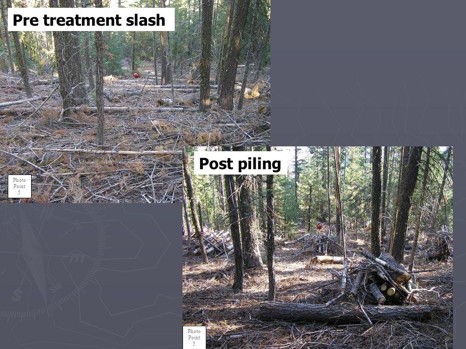 Post Treatment of NE LSR Helicopter Logging Slash.