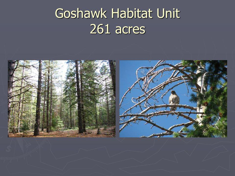 Goshawk Habitat Unit 261 acres