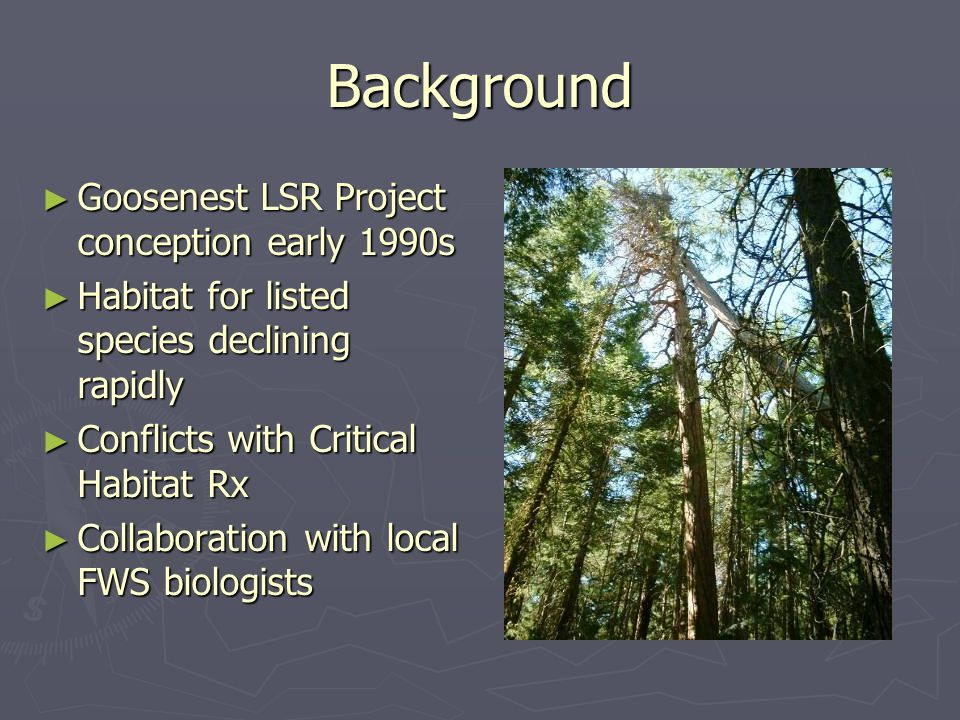 Background ► Goosenest LSR Project conception early 1990s ► Habitat for listed species declining rapidly ► Conflicts with Critical Habitat Rx ► Collaboration with local FWS biologists