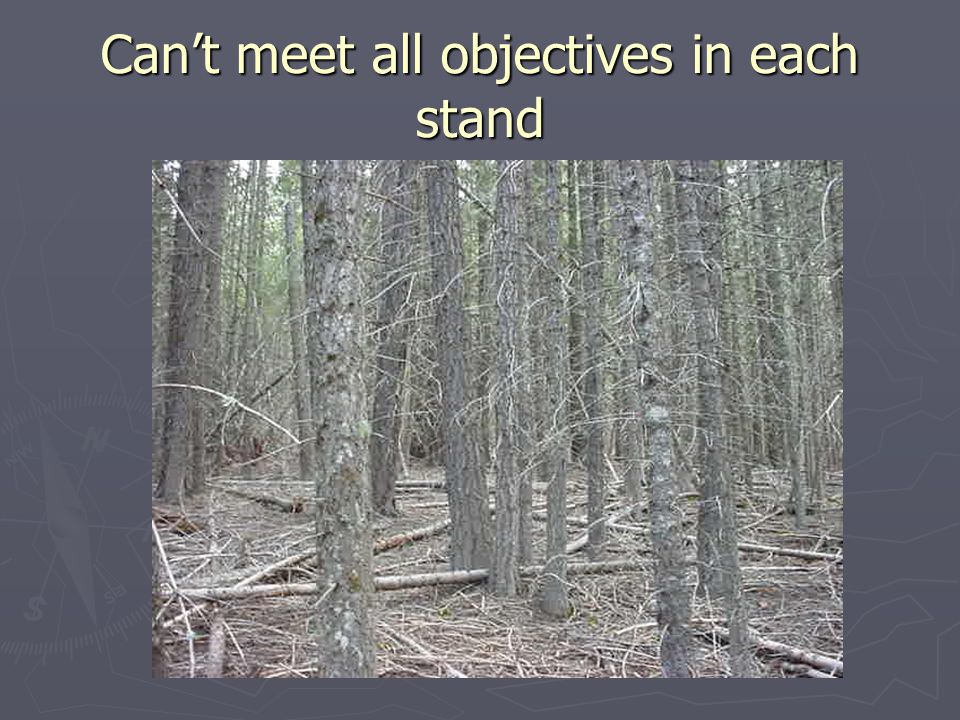 Can't meet all objectives in each stand