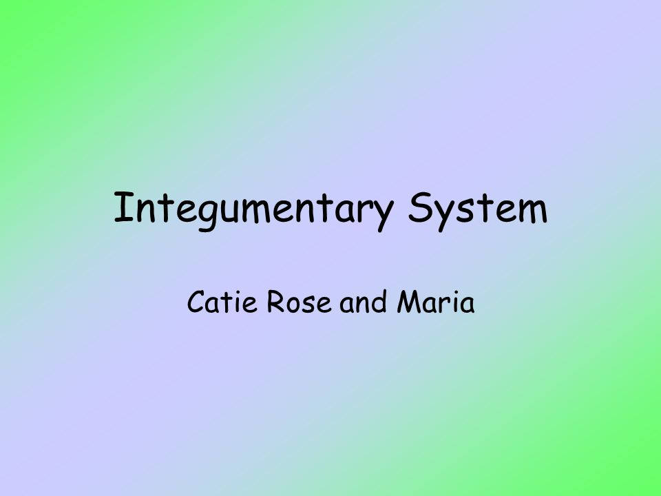 Integumentary System Catie Rose and Maria