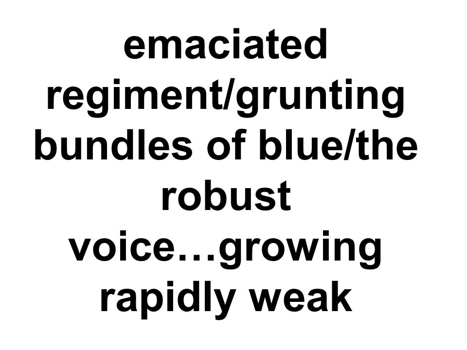 emaciated regiment/grunting bundles of blue/the robust voice…growing rapidly weak