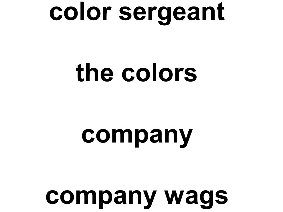 color sergeant the colors company company wags