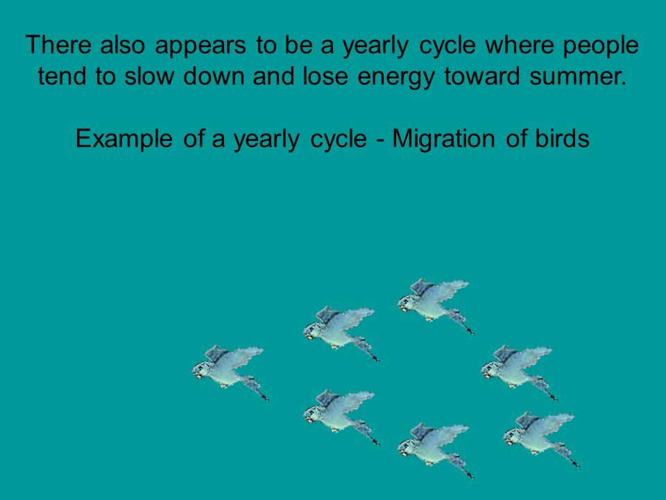 There also appears to be a yearly cycle where people tend to slow down and lose energy toward summer.