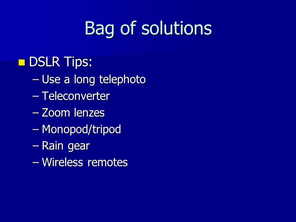 Bag of solutions DSLR Tips: DSLR Tips: –Use a long telephoto –Teleconverter –Zoom lenzes –Monopod/tripod –Rain gear –Wireless remotes