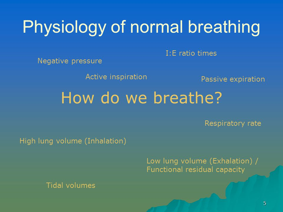 5 Physiology of normal breathing How do we breathe? Low lung volume (Exhalation) / Functional residual capacity High lung volume (Inhalation) Negative