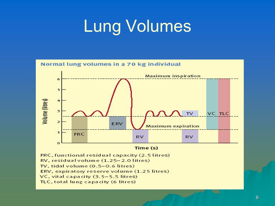 8 Lung Volumes
