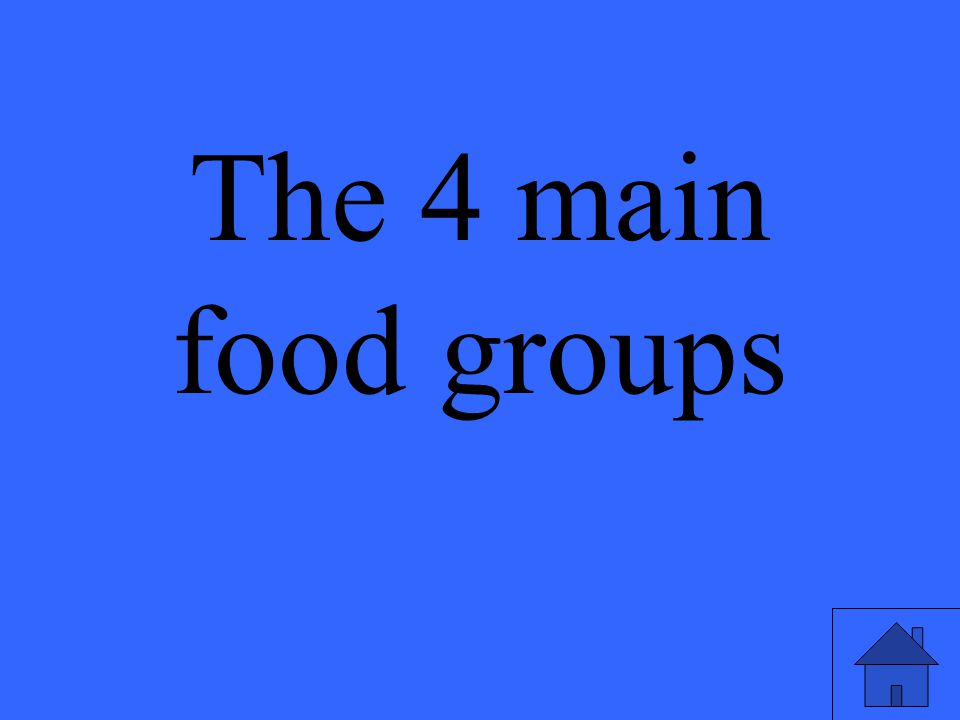 The 4 main food groups