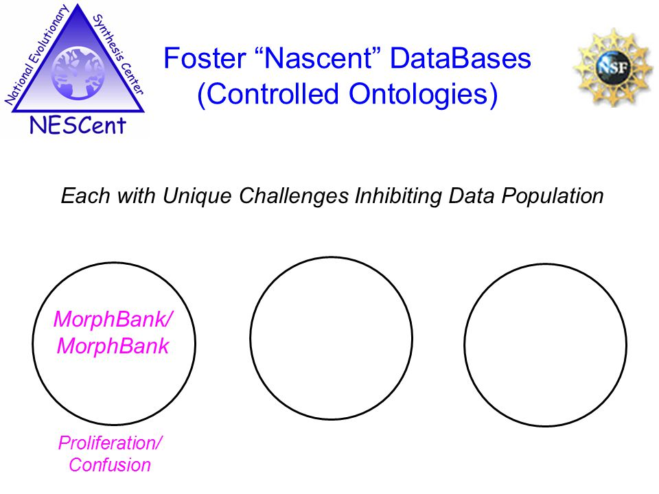 Each with Unique Challenges Inhibiting Data Population Foster Nascent DataBases (Controlled Ontologies) MorphBank/ MorphBank Proliferation/ Confusion