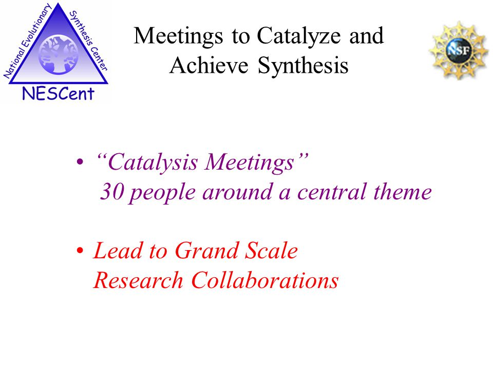 Catalysis Meetings 30 people around a central theme Lead to Grand Scale Research Collaborations Meetings to Catalyze and Achieve Synthesis