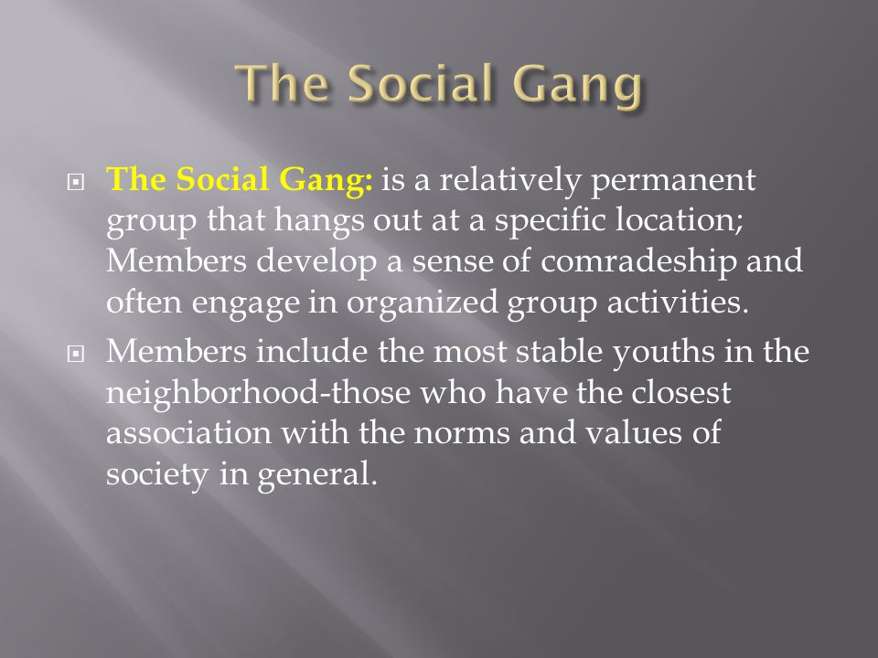  The Social Gang: is a relatively permanent group that hangs out at a specific location; Members develop a sense of comradeship and often engage in o