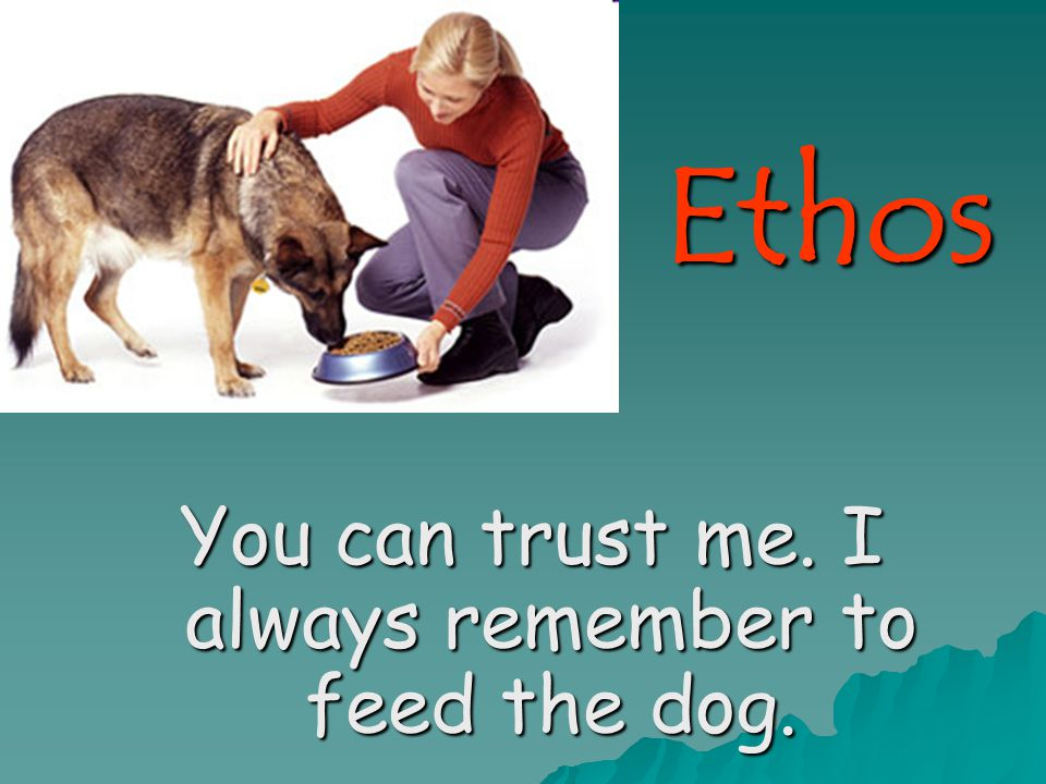 Ethos You can trust me. I always remember to feed the dog.