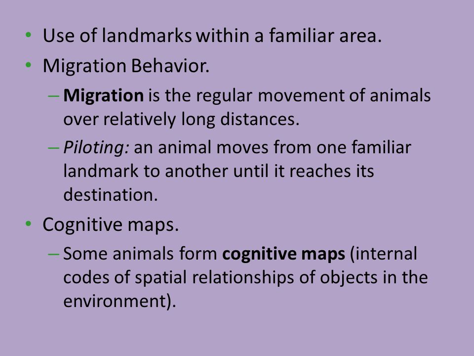 Use of landmarks within a familiar area. Migration Behavior. – Migration is the regular movement of animals over relatively long distances. – Piloting