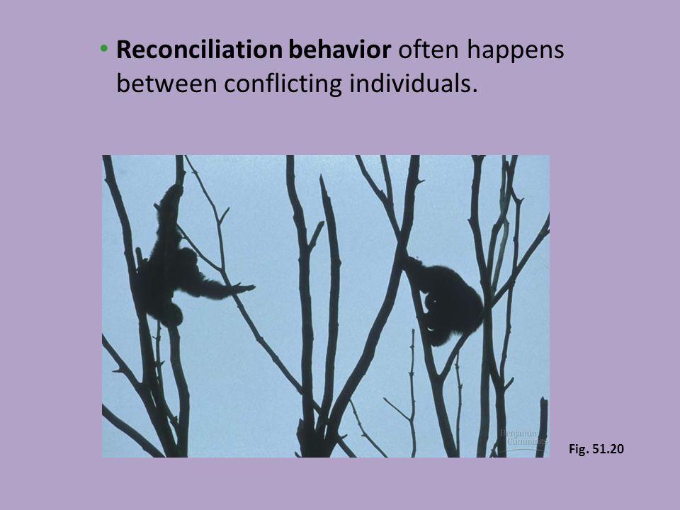 Reconciliation behavior often happens between conflicting individuals. Fig. 51.20