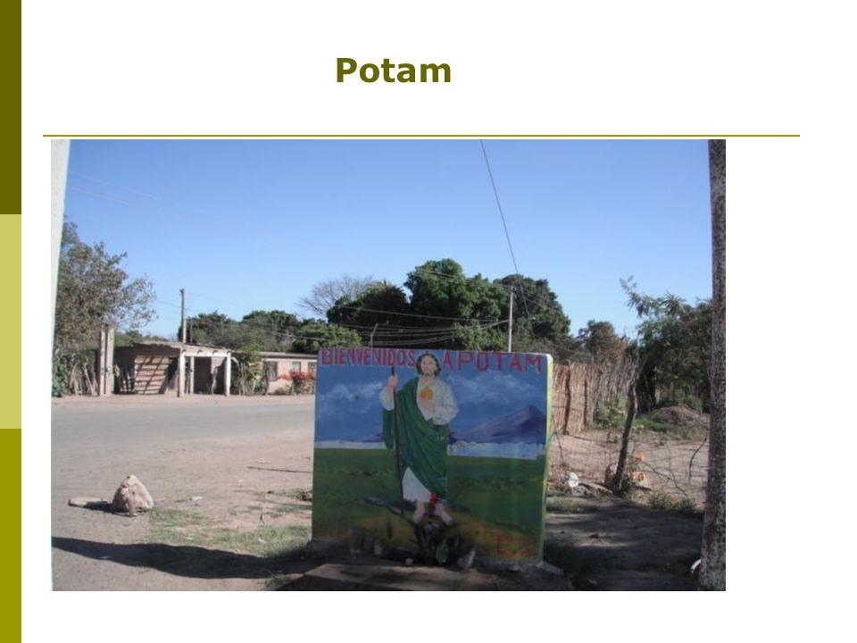 Potam