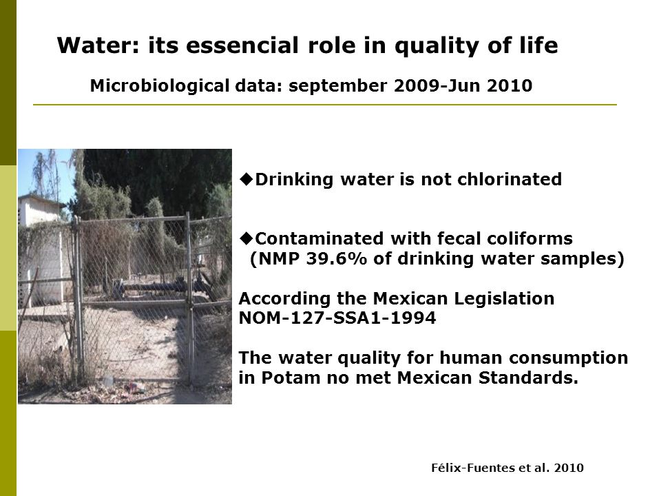 Well photo  Drinking water is not chlorinated  Contaminated with fecal coliforms (NMP 39.6% of drinking water samples) According the Mexican Legislation NOM-127-SSA1-1994 The water quality for human consumption in Potam no met Mexican Standards.