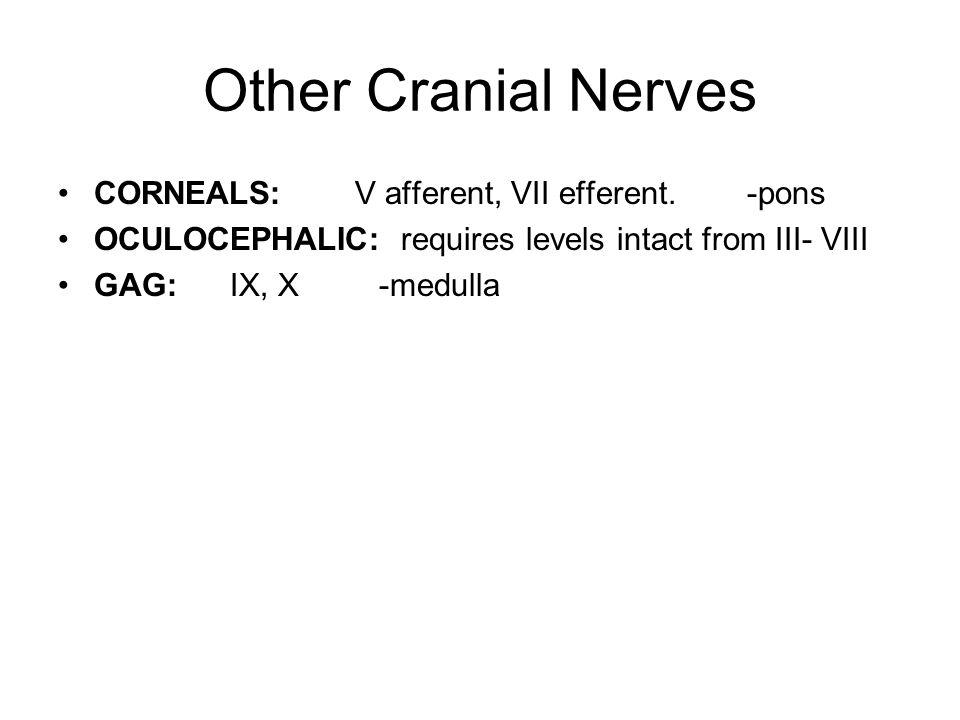 Other Cranial Nerves CORNEALS: V afferent, VII efferent. -pons OCULOCEPHALIC: requires levels intact from III- VIII GAG: IX, X -medulla