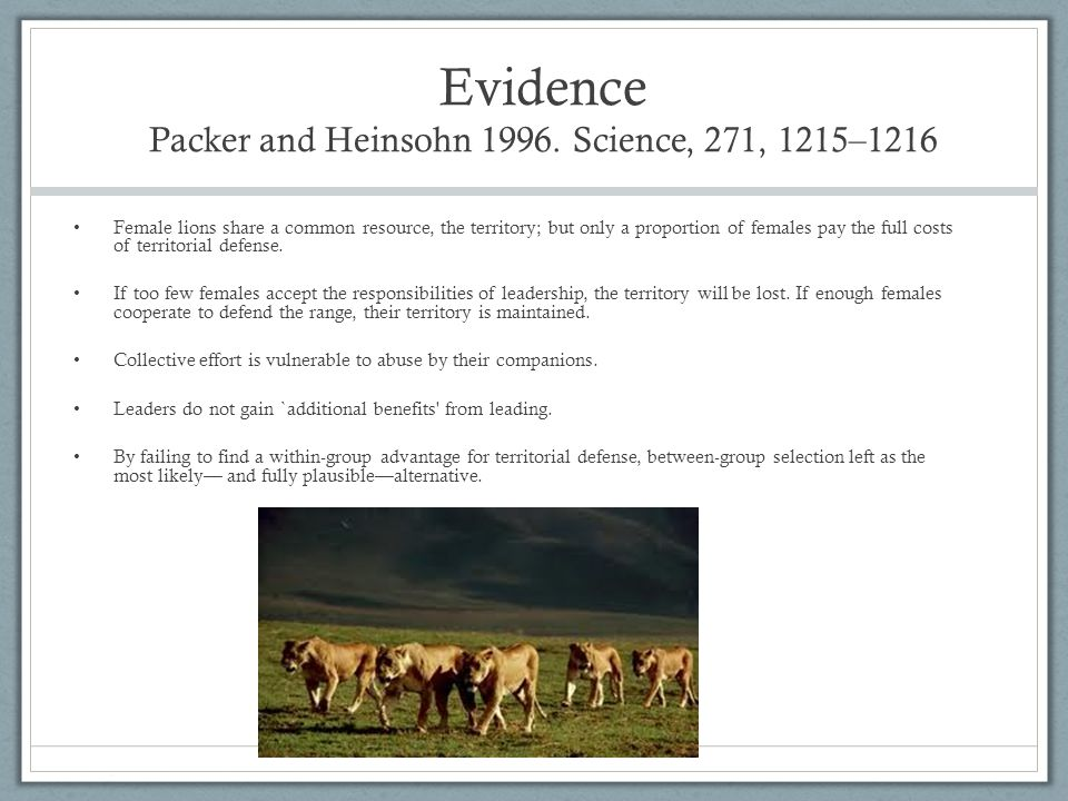 Evidence Packer and Heinsohn 1996. Science, 271, 1215–1216 Female lions share a common resource, the territory; but only a proportion of females pay t
