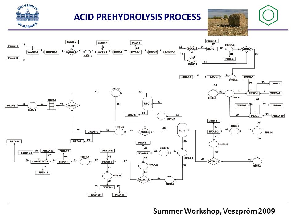Summer Workshop, Veszprém 2009 ACID PREHYDROLYSIS PROCESS