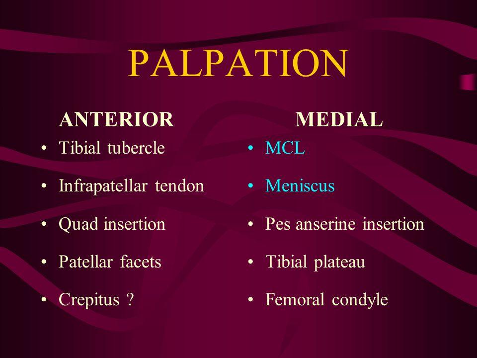 PALPATION ANTERIOR Tibial tubercle Infrapatellar tendon Quad insertion Patellar facets Crepitus .