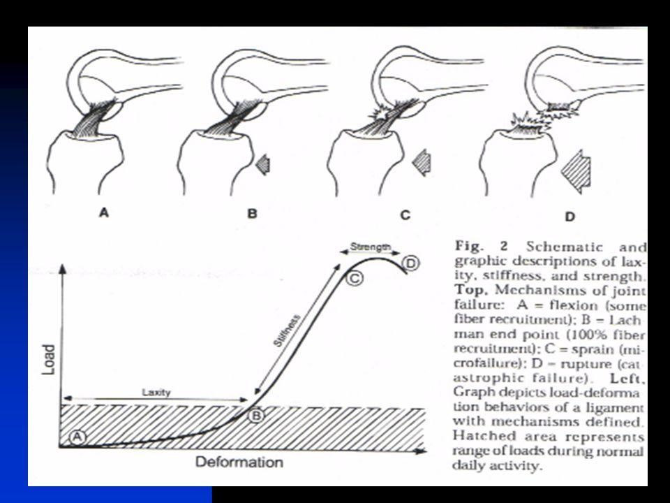Biomechanical Increased:  External tibial rotation  Varus rotation  Posterior tibial translation