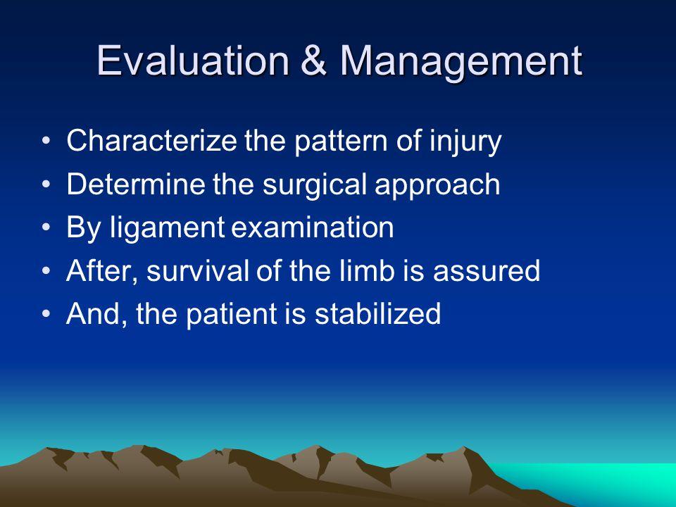 Knee dislocation management Reduce Splint & observe then operate External fixation Transfix pins Vascular repair Soft tissue condition?