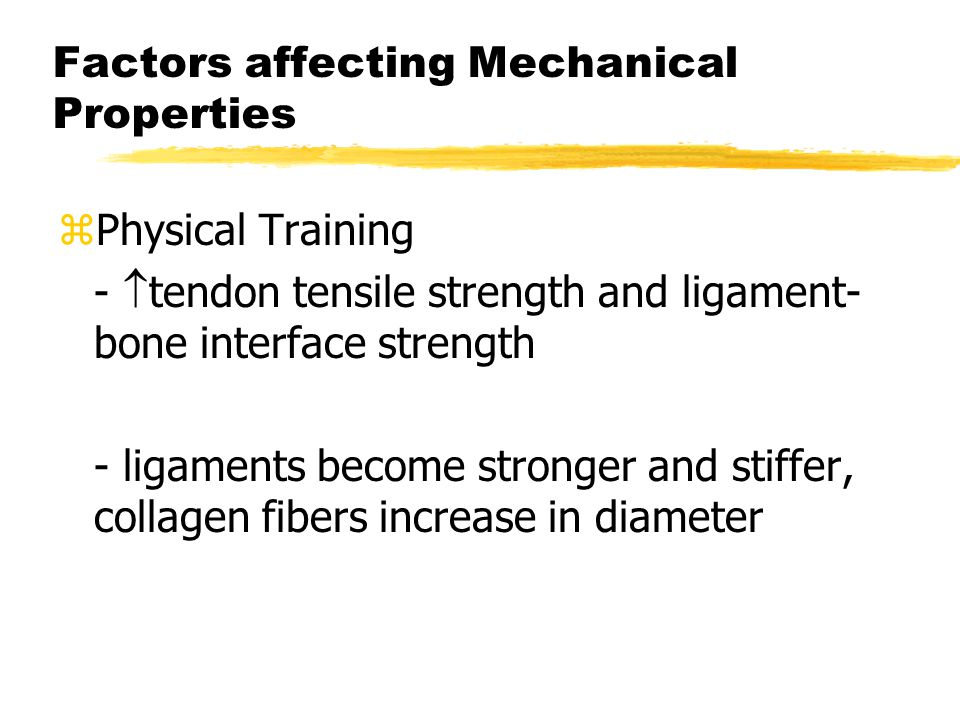 Factors affecting Mechanical Properties zPhysical Training -  tendon tensile strength and ligament- bone interface strength - ligaments become stronger and stiffer, collagen fibers increase in diameter