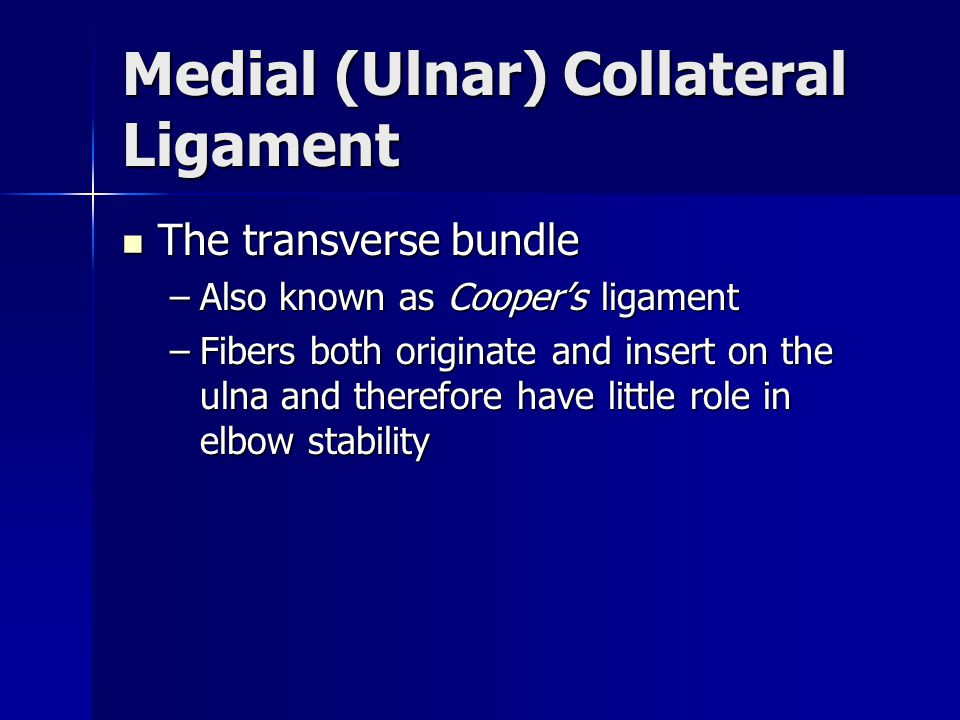 Medial (Ulnar) Collateral Ligament The transverse bundle The transverse bundle –Also known as Cooper's ligament –Fibers both originate and insert on t