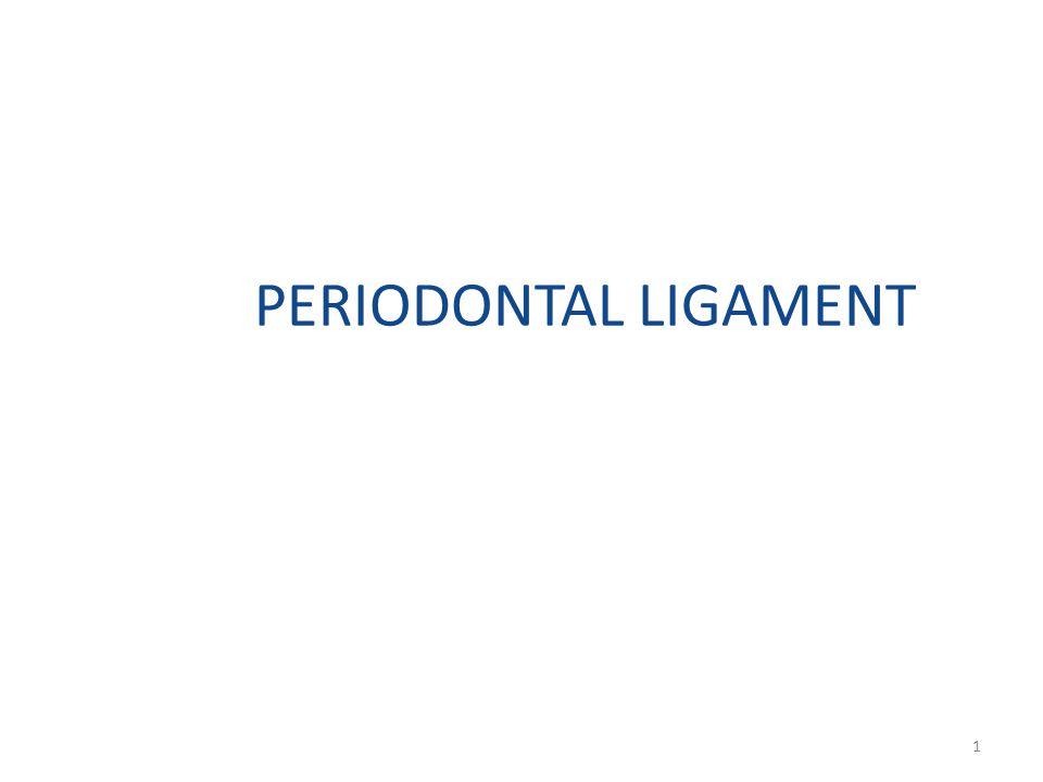 PERIODONTAL LIGAMENT 1