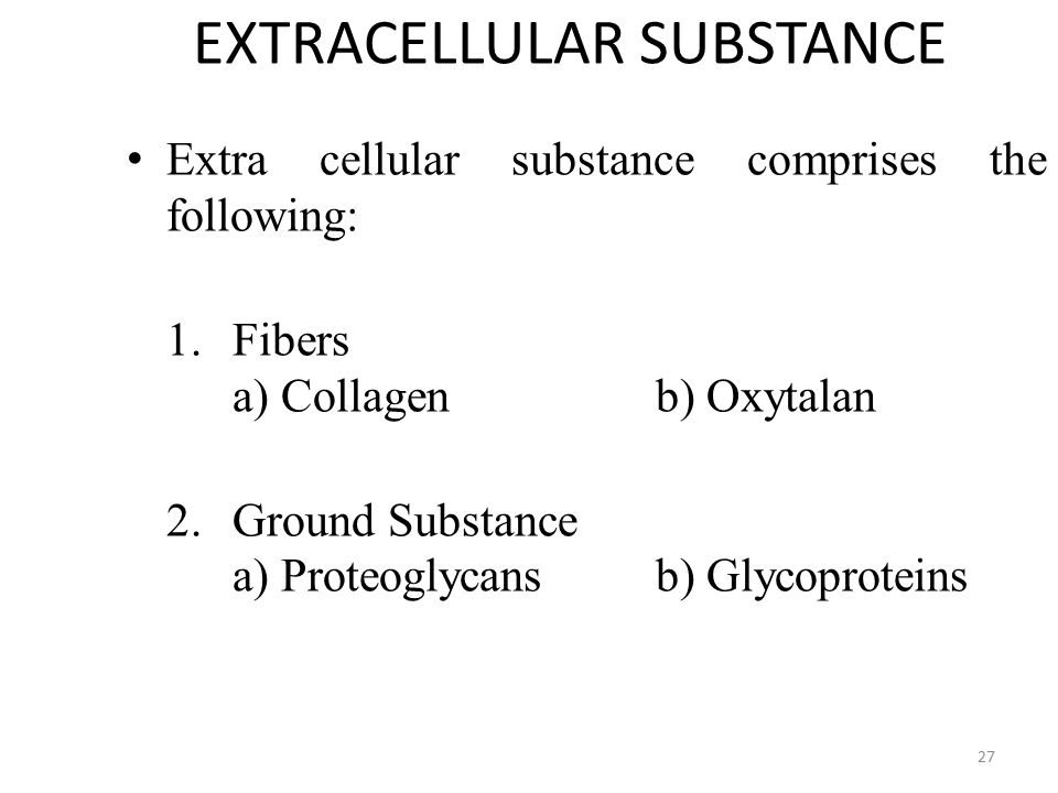 EXTRACELLULAR SUBSTANCE Extra cellular substance comprises the following: Extra cellular substance comprises the following: 1.Fibers a) Collagen b) Oxytalan 2.Ground Substance a) Proteoglycans b) Glycoproteins 27