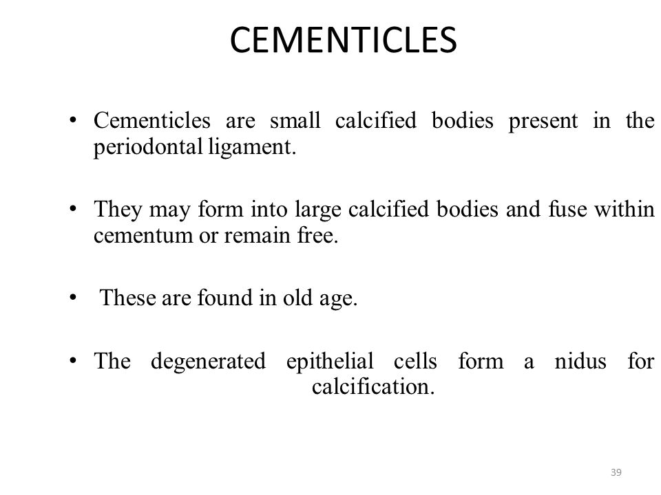 CEMENTICLES Cementicles are small calcified bodies present in the periodontal ligament.