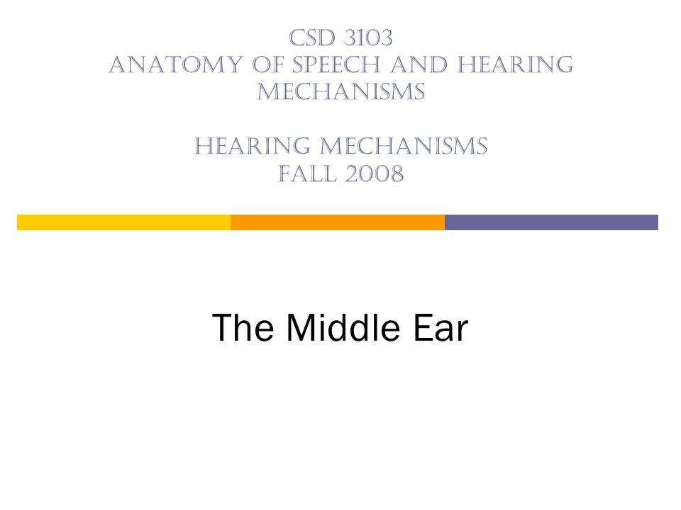 The middle ear Important Structures: — Epitympanic recess — Tympanic cavity — Aditus ad antrum — Mastoid air cells — Ossicles