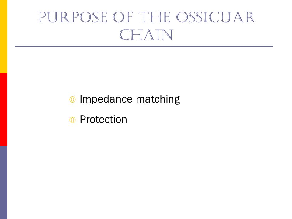 Ossicular motion