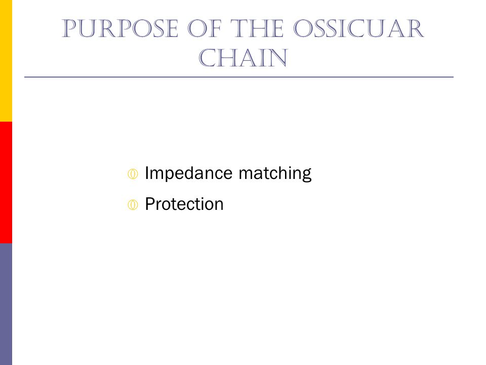 Purpose of the ossicuar chain The acoustic reflex Tensor tympani muscle Stapedius muscle