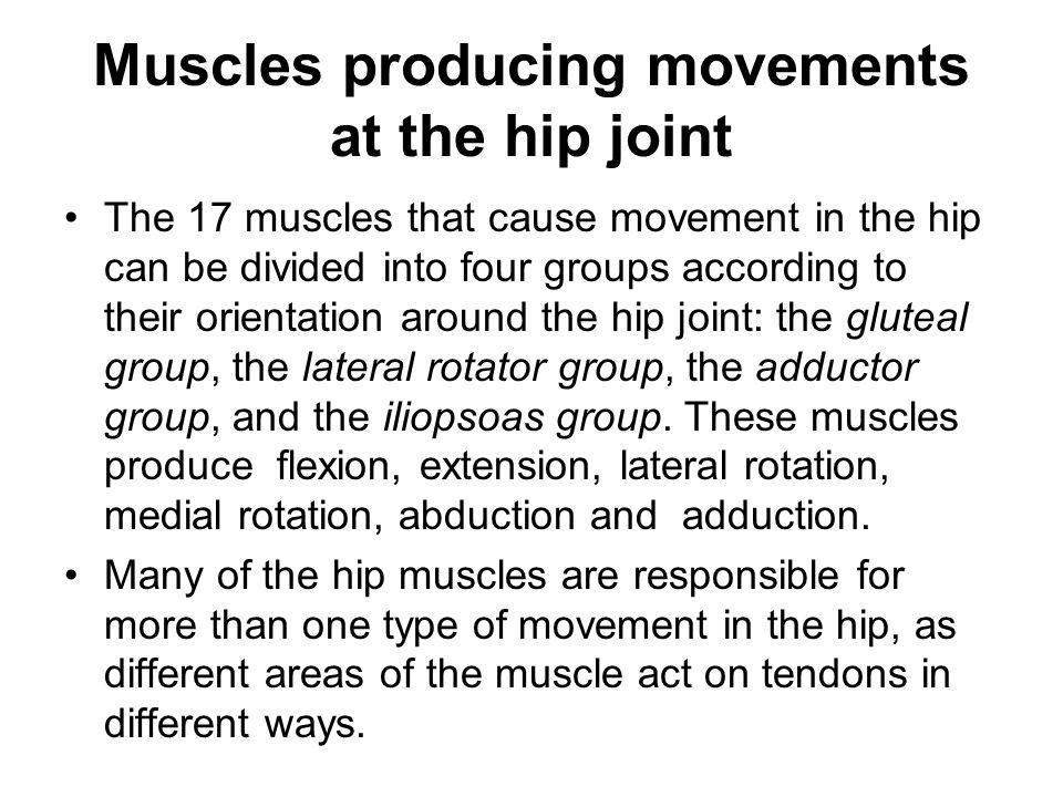 Muscles producing movements at the hip joint The 17 muscles that cause movement in the hip can be divided into four groups according to their orientation around the hip joint: the gluteal group, the lateral rotator group, the adductor group, and the iliopsoas group.