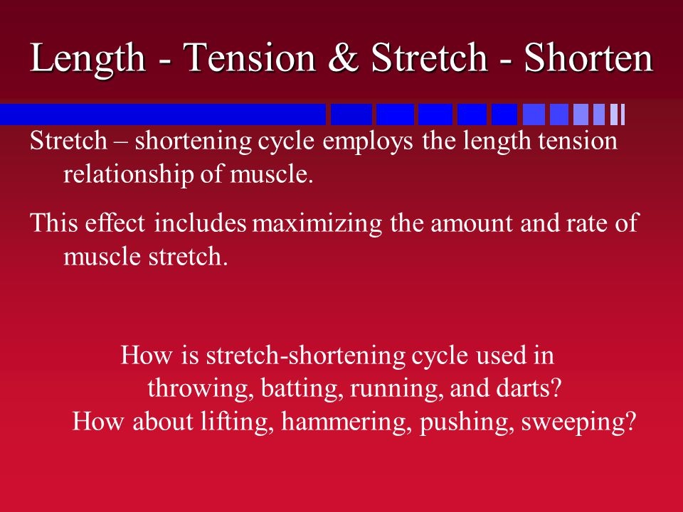 Length - Tension & Stretch - Shorten Stretch – shortening cycle employs the length tension relationship of muscle. This effect includes maximizing the