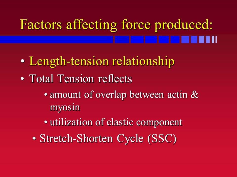 Factors affecting force produced: Length-tension relationshipLength-tension relationship Total Tension reflectsTotal Tension reflects amount of overla