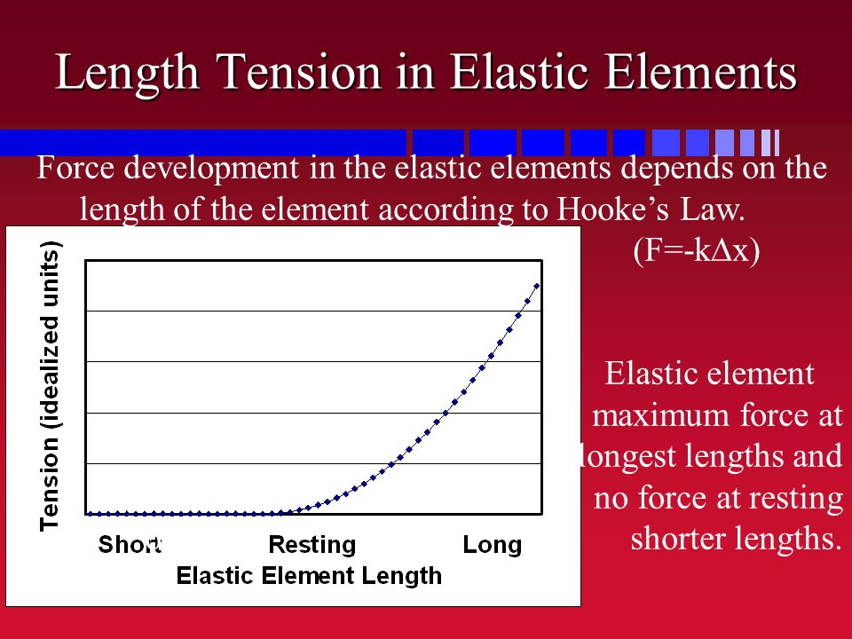 Length Tension in Elastic Elements Force development in the elastic elements depends on the length of the element according to Hooke's Law. (F=-k  x)