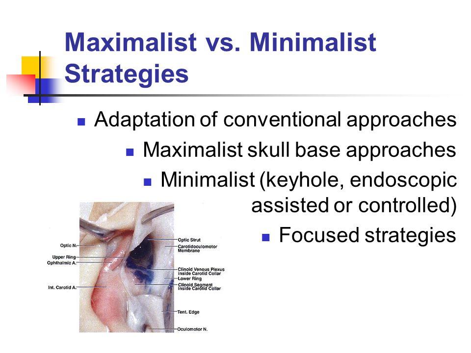 Maximalist vs.