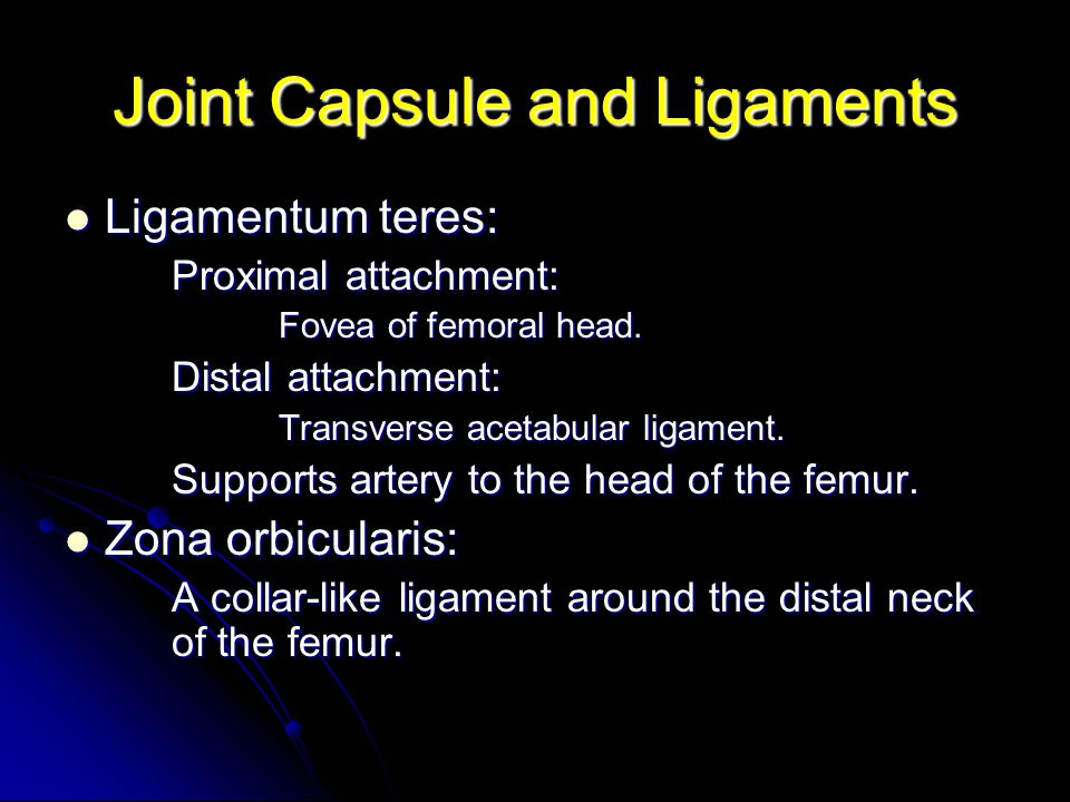 Joint Capsule and Ligaments Ligamentum teres: Ligamentum teres: Proximal attachment: Fovea of femoral head.